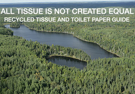 Not All Tissue Paper Was Created Equal