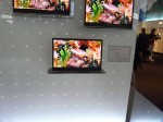 15 inch oled was also on display