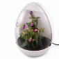 Grow Your Own At Work - The USB Greenhouse
